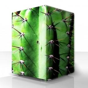 Volt Cool Cajon : Cactus Tube